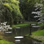 Invitation zen à la méditation