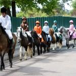 Promenades à poneys pour les petits