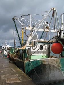 La pêche aux petits bateaux est omniprésente