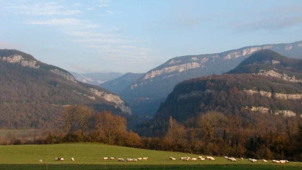 Vue des Monts Jura depuis le plateau du Lizon
