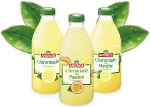 Les 3 citronnades Andros décevantes selon mon palais