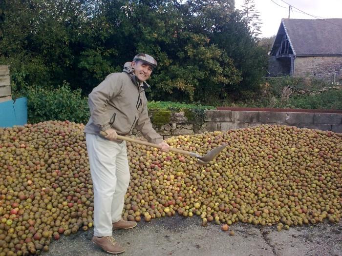 Après stockage, les pommes passeront dans le pressoir qui remonte à 1934