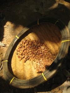 Dans les paniers d'osier graviers se mêlent aux pierres précieuses