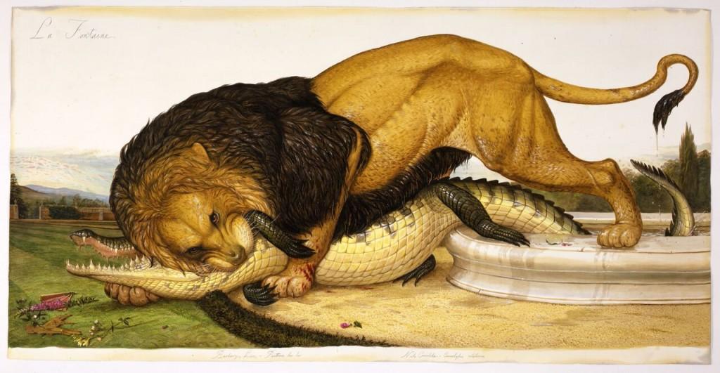 Le lion et le crocodile