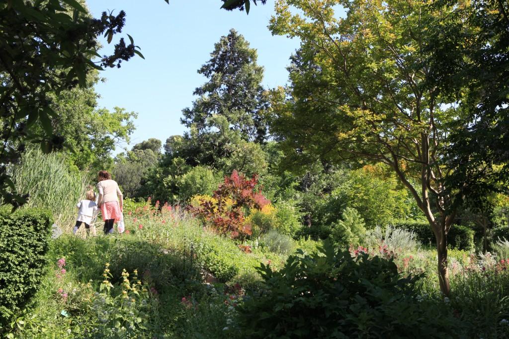 Harmas , le jardin