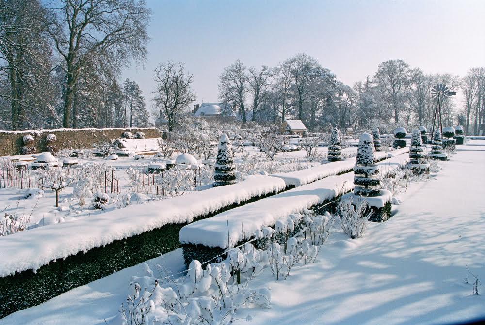 Le potager de Lentilly sous la neige