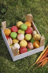 Les macarons jardiniers de Yannick Lefort