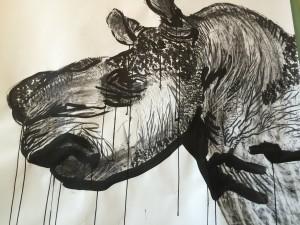 Rhino dont la corne a été arraché
