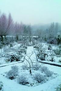 Le jardin de Didier en hiver