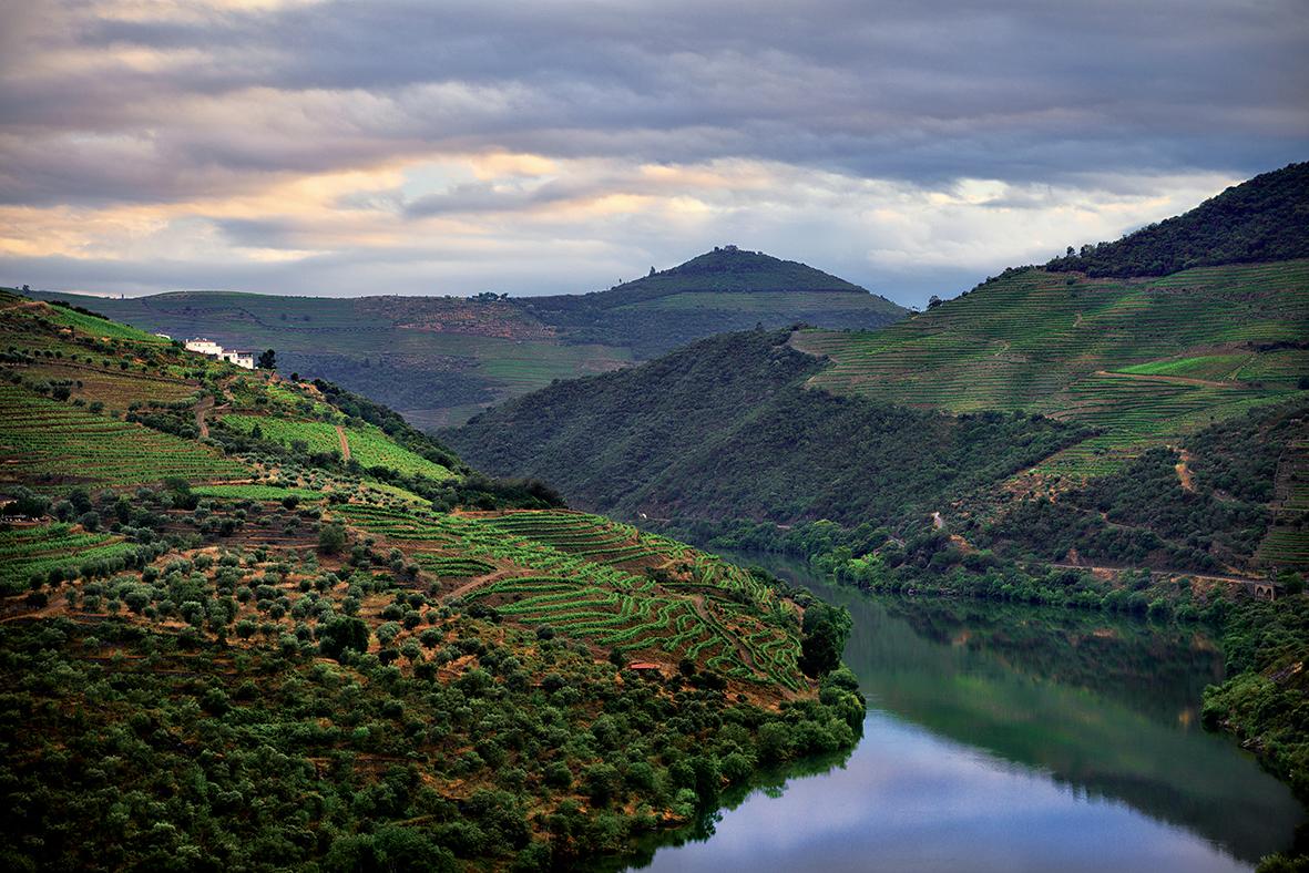 Le Douro coule paisiblement au pied des vignobles