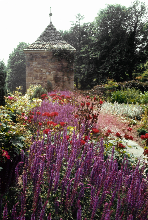L 39 evasion des sens expo de photos kerdalo for Jardins anglais celebres