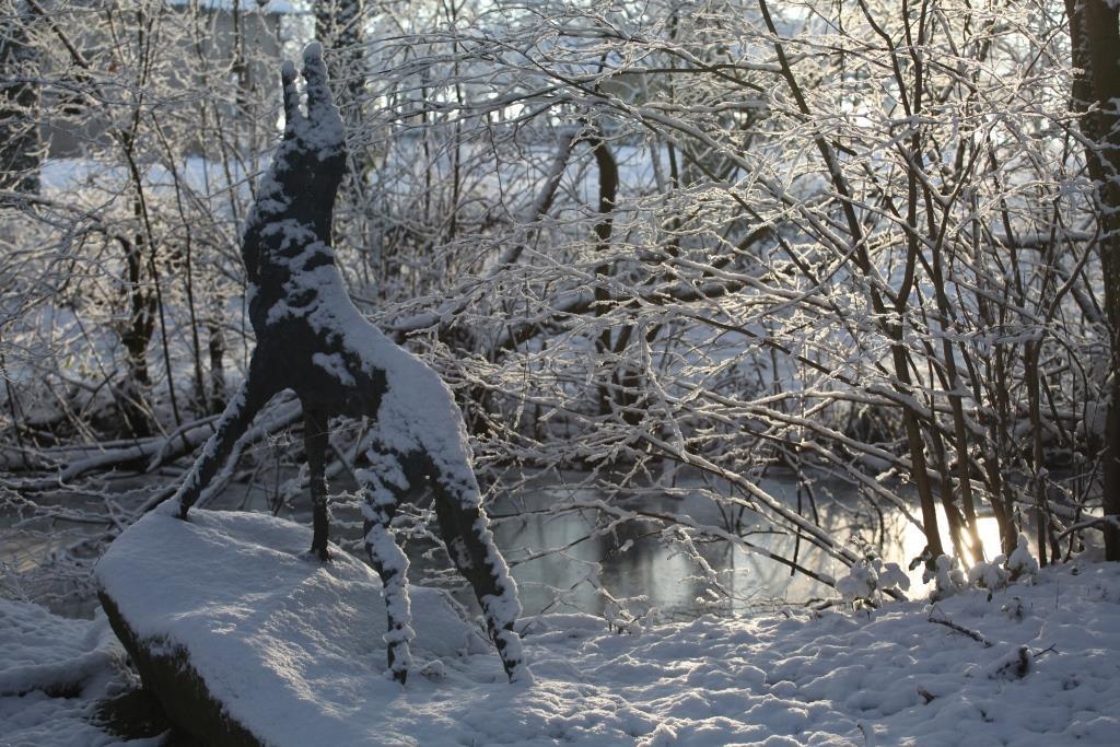En hiver le loup
